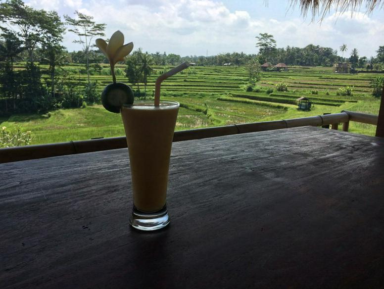 Risterraser på Bali